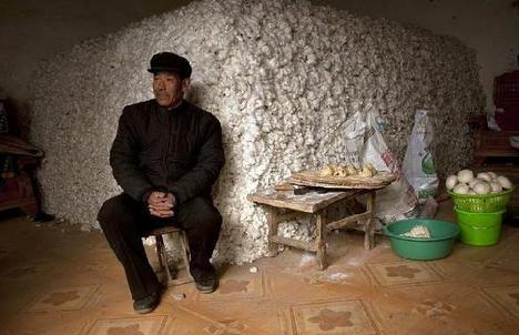 YuFengChineseCottonFarmer2011-02-01.jpg