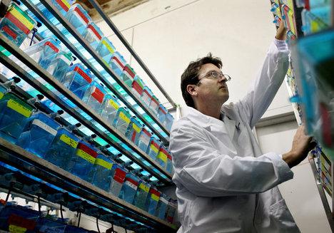LauthXavierAquacultureScientist2012-06-04.jpg