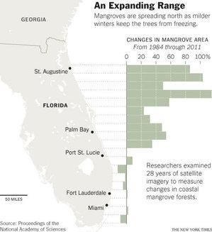 MangroveMapGraphic2014-01-19.jpg